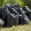 Garbage bags — Stock Photo #12751314