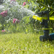 Watering garden - Stock Photo