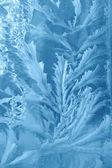 Winter background — ストック写真