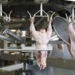 Production of white meat — Stock Photo