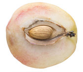 Nucleus of a peach — Stock Photo