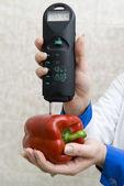 Controle sanitário dos alimentos — Fotografia Stock