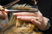 Scissors cutting hair — Stock Photo
