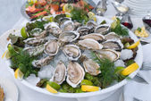 Raw oyster — Stock Photo