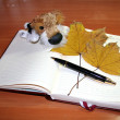 Stock Photo: Autumn business plan