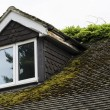 Stock Photo: Moss Covered Roof and Flaky Dormer Window