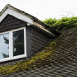 Moss Covered Roof and Flaky Dormer Window - Stock Photo