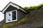 Moss Covered Roof and Flaky Dormer Window — Stok fotoğraf