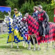 Постер, плакат: Three Tudor Knights on Horses