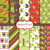 Autumn Forest Pattern Collection — Stockvector