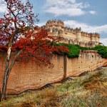 Castles of Spain - Coca castle — Stock Photo #12745175