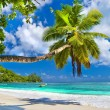 Stock Photo: Idyllic tropical scenery - Seychelles