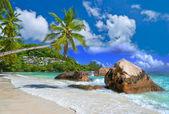 田园诗般的热带风光-塞舌尔 — 图库照片