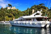 Portofino, Italy. Yachts — Stock Photo