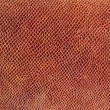 Brown leather texture — Foto de Stock