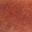 Foto de Stock  : Brown leather texture