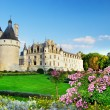 Beautiful Chenonceau castle - Stock Photo