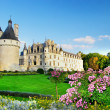 Стоковое фото: Beautiful Chenonceau castle