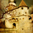 Dark castle — Stock Photo #12768026
