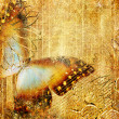 Artwork in golden colors with butterfly — Stockfoto #12768063