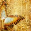 Artwork in golden colors with butterfly — Stock Photo