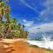 Sri lanka  beaches - Stock Photo