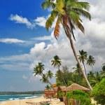 Tropical solitude - beach scene with boat. Sri lanka — Stock Photo #12768309