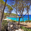 Mallorca beaches - Stock Photo