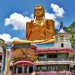 Greatest buddhistic landmarks - Dambula golden temple , Sri lanka - 图库照片