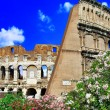 Colosseum — Stock Photo #12768693