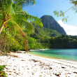 Pictorial tropical shore — Stock Photo