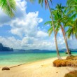 Stock Photo: Tropical scenery