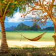 Tropical paradise — Stock Photo #12768943
