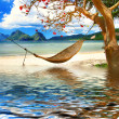 Stock Photo: Tropical relax