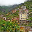 Bella Italia series - Riomaggiore mountain village with famous lemons, Cinque terre — Stock Photo