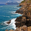 Italian scenery - rock formations . Cinque terre - Stock Photo