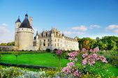 красивый замок шенонсо — Стоковое фото