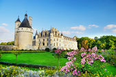 Beautiful Chenonceau castle — Стоковое фото