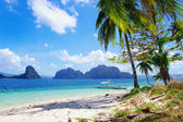 Pictorial tropical scene — Stock Photo