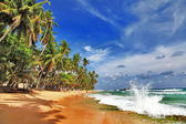 Sri lanka beaches — Stock Photo