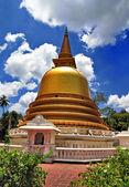 Gyllene stupa i dambulla sri lanka — Stockfoto