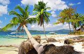 Pictórica cena de praia tropical rochosa — Foto Stock