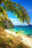 Bildmässigt tropiska scen — Stockfoto