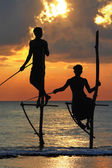 Amazing sunset in Sri lanka with traditional stick-fishermen — Stock Photo