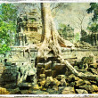 Ancient trees of ancient temple — Stock Photo #12795438