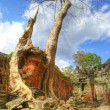 Stock Photo: Ruins of old khmer temple with ancient trees