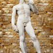 David sculpture in Florence - Stock Photo