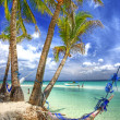 Tropical scenery with hammock — Stock Photo
