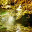 Fairy autumn river - Stock Photo