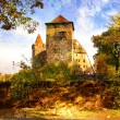 Medieval castle in Germany - artwork in painting style — Stock Photo